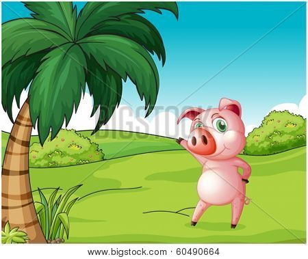 Illustration of a pig near the coconut tree on a white background