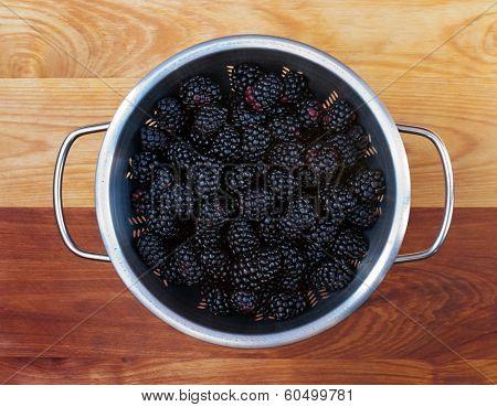 Fresh Blackberry Harvest