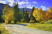 stock photo of colorado high country  - yellow red and green aspens and country road in colourful mountains of Colorado during foliage season - JPG