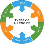 image of allergies  - Types of Allergies Word Circle Concept with great terms such as mold food pollen and more - JPG