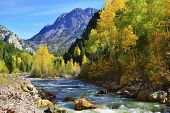 foto of conifers  - river and colourful mountains of Colorado during foliage season - JPG