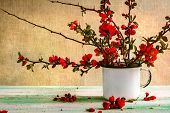 foto of barberry  - Still life with a bouquet of barberry - JPG