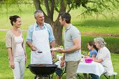 picture of extend  - View of an extended family with barbecue in the park - JPG