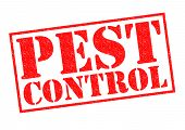 stock photo of cockroach  - PEST CONTROL red Rubber Stamp over a white background - JPG
