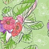 image of begonias  - Vector illustration of Seamless pattern with drawing begonia flowers - JPG