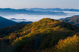 stock photo of smoky mountain  - Fall colors in the Smoky Mountains National Park - JPG