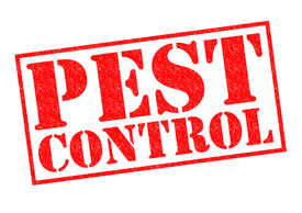 pic of scourge  - PEST CONTROL red Rubber Stamp over a white background - JPG
