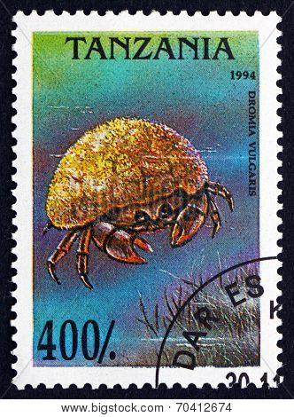 Postage Stamp Tanzania 1994 Dromia Vulgaris, Crab