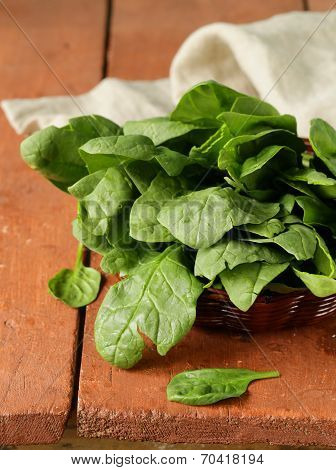 fresh green spinach organic healthy and wholesome food