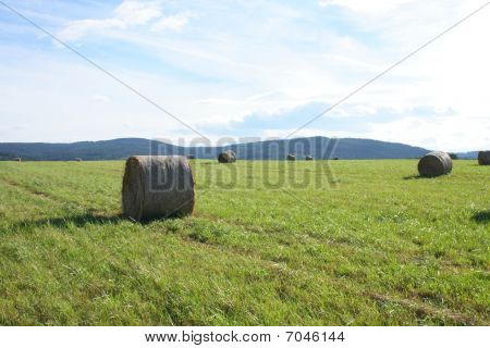 Czech Summer Country