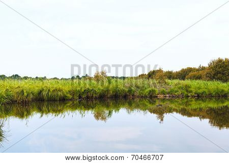 Green Coastline Of Briere Marsh, France