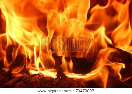 Romantic Chimney Fire, Burning Logs