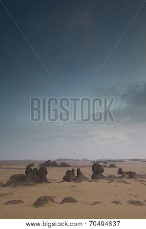 Landscape in Desert
