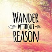 foto of wander  - Inspirational Typographic Quote  - JPG