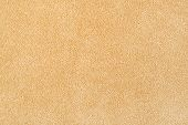 picture of floor covering  - New carpet texture - JPG