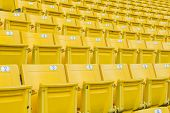 pic of grandstand  - The Empty Chair at Grandstand - JPG