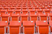 picture of grandstand  - The Empty Chair at Grandstand - JPG