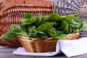 picture of sorrel  - Fresh sorrel in round wicker basket on napkin on wooden background - JPG