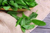 stock photo of sorrel  - Tuft of fresh sorrel in wooden plate on piece of sacking on wooden background - JPG
