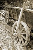 image of covered wagon  - historic hay cart covered with ice needles in soft browns - JPG