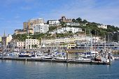picture of marina  - boats moored in Torquay marina in Devon - JPG