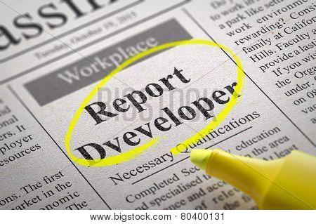 Report Developer Vacancy in Newspaper.