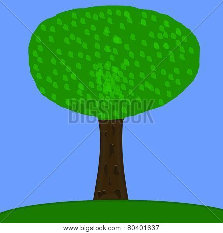 Green Tree With Blue Sky