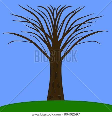 Tree Minus Leaves