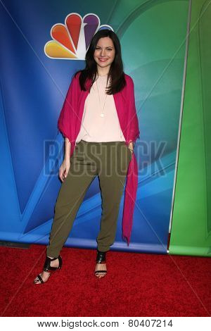 LOS ANGELES - DEC 16:  Jill Flint at the NBCUniversal TCA Press Tour at the Huntington Langham Hotel on December 16, 2015 in Pasadena, CA
