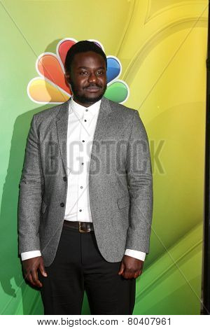 LOS ANGELES - JAN 16:  Babou Ceesay at the NBC TCA Winter 2015 at a The Langham Huntington Hotel on January 16, 2015 in Pasadena, CA