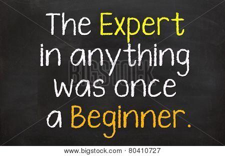 The Expert was a Beginner
