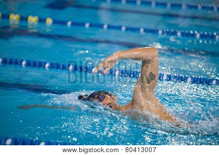 Milan - December  23:  Filippo Magnini  (italy)  Performing Freestyle In  Swimming Meeting Brema Cup