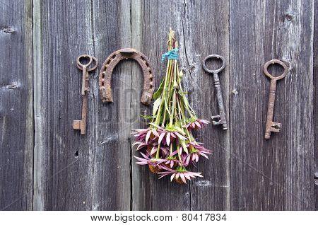 Echinacea Purpurea  Coneflower Bunch, Horseshoe And Old Key On Wall