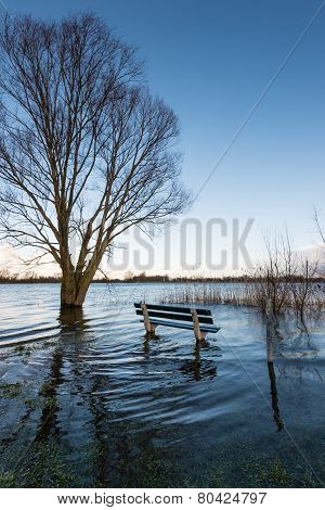 Flooded River Banks In The Winter Season