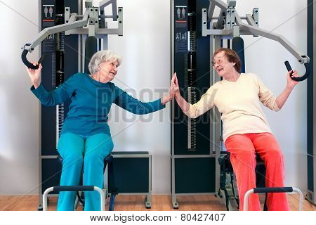 Happy Grannies Enjoying Chest Press Exercise