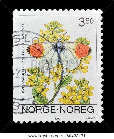 Norway 1993