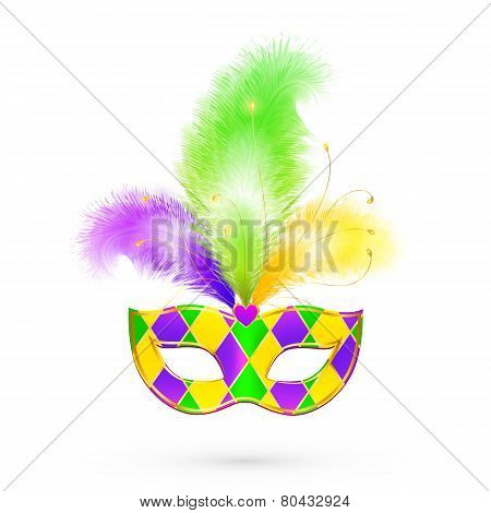 Mardi Gras traditional colors vector mask