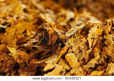 Bulk Tobacco Background