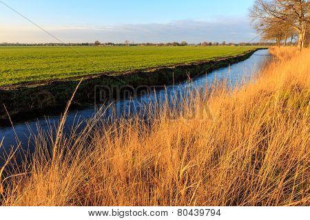 A Grassland And Ditch At Sunset In A Dutch Landscape
