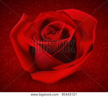 Red Rose On A Bright Background