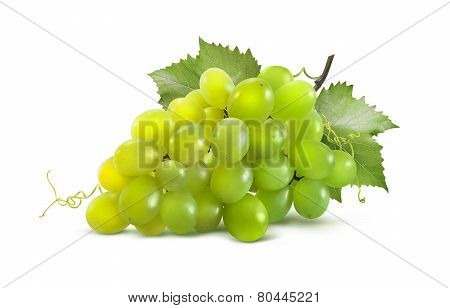 Green Grapes Horizontal And Leaves Isolated On White Background