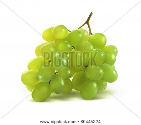 Tiny Green Grapes Bunch Isolated On White Background