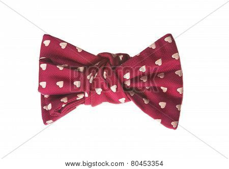 elegant bow tie for a holiday