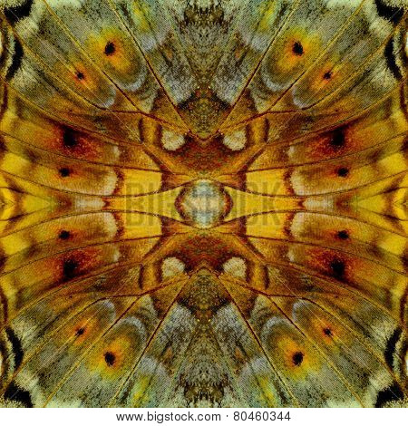 Exotic Yellow Background Texture Made Of Vagrant Butterfly Wing Skin