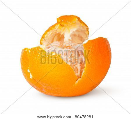 In Front Partially Purified Tangerine