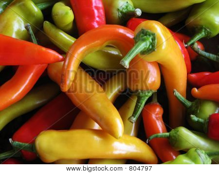 Chile Peppers 370