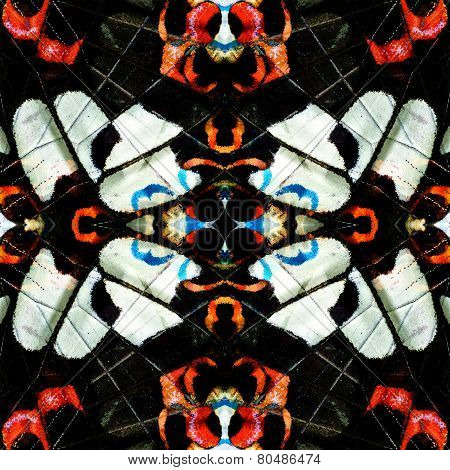 The Very Exotic Background Texture Made Of Red Helen Butterfly Wing Skin