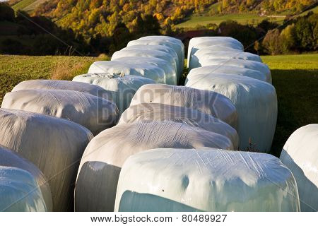 Bale Of Straw Infold In Plastic Film