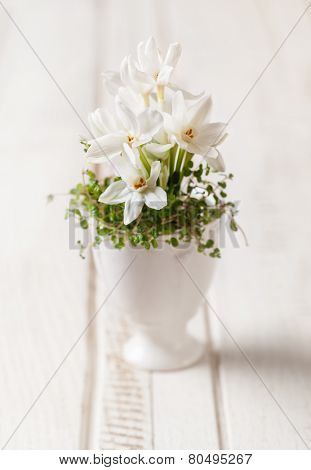 Spring flowers in eggcup on the vintage wooden table. soft focus