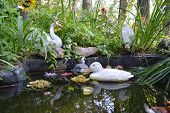 image of duck pond  - Artificial pond with toy ducks in city park in Zelenogorsk outskirts of St - JPG
